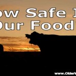Food Safety – Do You Need To Be Concerned?